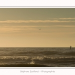 Quend_Plage_Paddle_25_02_2015_003-border.jpg