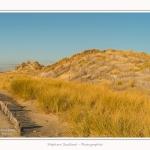 Quend_Plage_dunes_15_02_2015_002-border.jpg