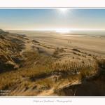 Quend_Plage_dunes_15_02_2015_010-border.jpg