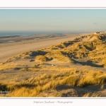 Quend_Plage_dunes_15_02_2015_012-border.jpg
