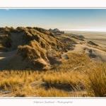 Quend_Plage_dunes_15_02_2015_014-border.jpg