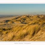 Quend_Plage_dunes_15_02_2015_015-border.jpg