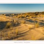 Quend_Plage_dunes_15_02_2015_021-border.jpg