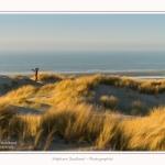 Quend_Plage_dunes_15_02_2015_026-border.jpg
