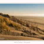 Quend_Plage_dunes_15_02_2015_028-border.jpg