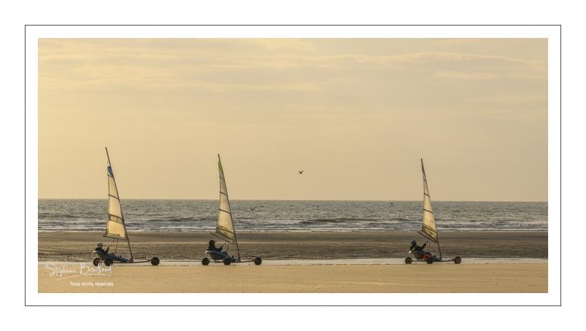 Chars-à-voile sur la plage