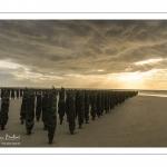 Les bouchots sur la plage de Quend