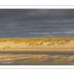 Les dunes éclairées par le soleil couchant