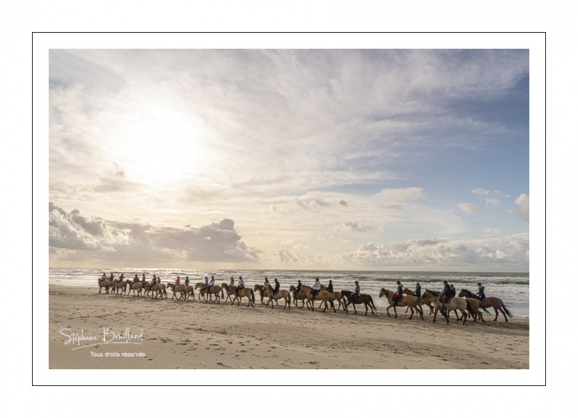 Troupe de cavaliers et leurs chevaux Henson sur la plage