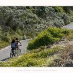 Promenande sur la route blanche entre Cayeux et le Hourdel. Départ de la la Mollière d'Aval et retour en longeant le front de mer. Saison : été - Lieu : La route blanche, La mollière d'Aval, Baie de Somme, Somme, Hauts-de-France, France.