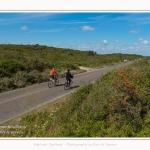 Route_blanche_15_08_2017_005-border