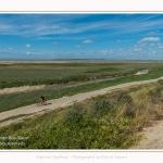Route_blanche_15_08_2017_016-border