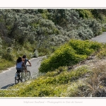 Route_blanche_15_08_2017_039-border