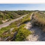 Route_blanche_15_08_2017_075-border