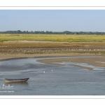 Les mollières face aux quais de Saint-Valery