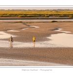 Un couple de touristes traverse la slikke pour aller se promener dans les mollières - Saison : été - Lieu : Saint-Valery-sur-Somme, Baie de Somme, Somme, Picardie, France