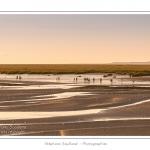 Un groupe de touristes de retour d'une promenade en baie guidée par un guide nature. - Saison : été - Lieu : Saint-Valery-sur-Somme, Baie de Somme, Somme, Picardie, France