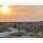 Soleil couchant sur l'entrée du chemin menant à la plage de la Mollière d'Aval