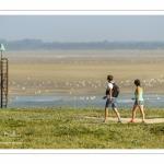 Promeneurs dans les mollières du Cap Hornu en Baie de Somme
