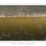Gros plan sur les vagues qui viennent s'écraser sur la plage de Fort-Mahon - Saison : Hiver - Lieu :  Fort-Mahon, côte Picarde, Somme, Picardie, France
