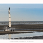 Chars_a_voile_Quend_Plage_14_04_2017_067-border