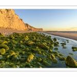 Les falaises du Cap Blanc-Nez