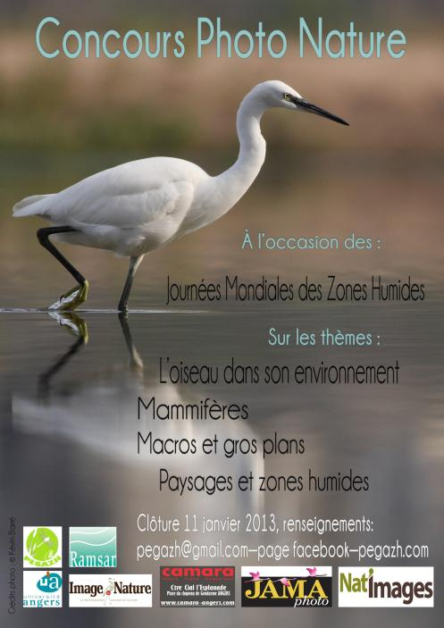 concours_photo_2013