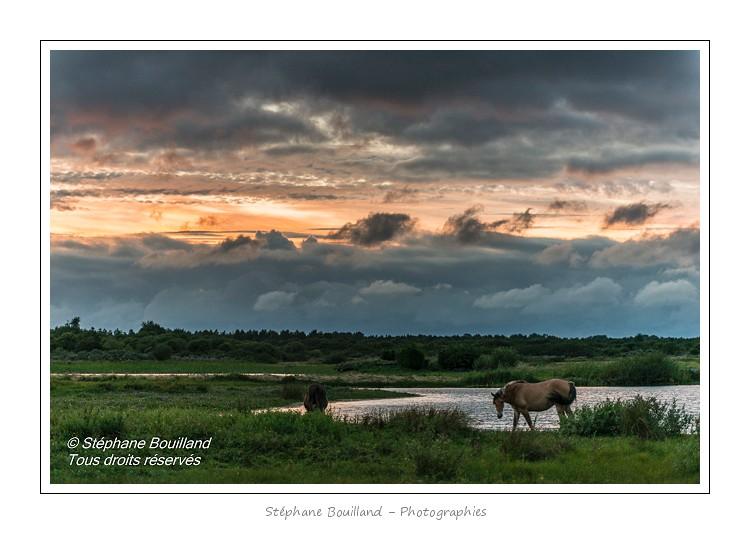 Orage sur le marais du Crotoy (Baie de Somme)