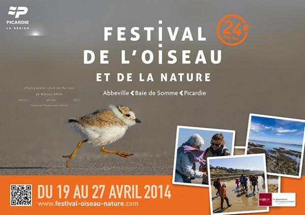 Festival de l'oiseau et Rencontres de la Photo Nature : çà approche !