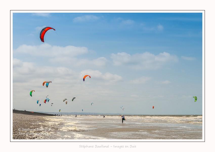 Saison : Printemps - Lieu : Cayeux-sur-mer, Somme, Picardie, Hauts-de-France,France
