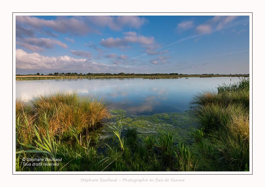Paysages du marais du Crotoy (La Bassée)