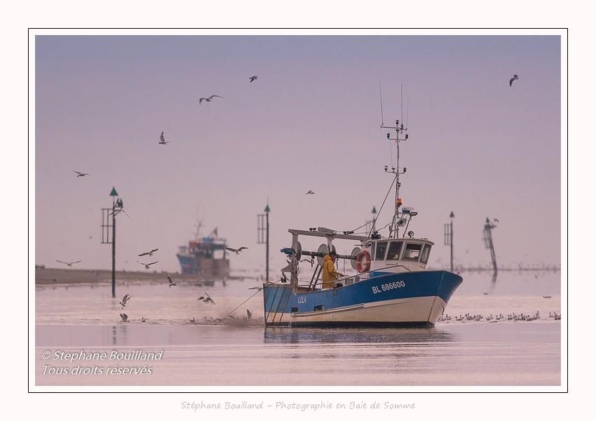 Les pêcheurs de crevettes du Hourdel