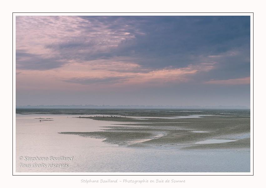 Promenade au Hourdel, en baie de Somme