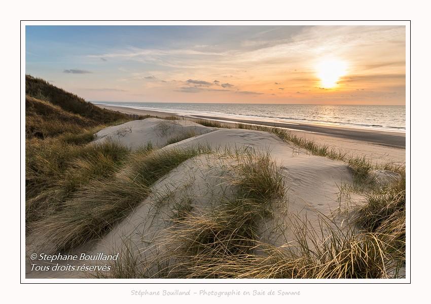 Dans les dunes, à Quend-Plage