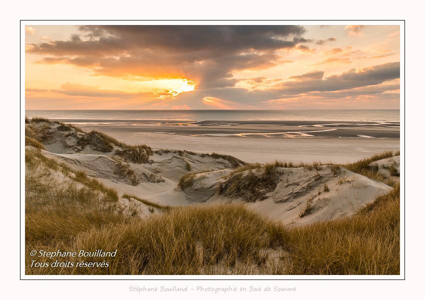 Dans les dunes de Fort-Mahon