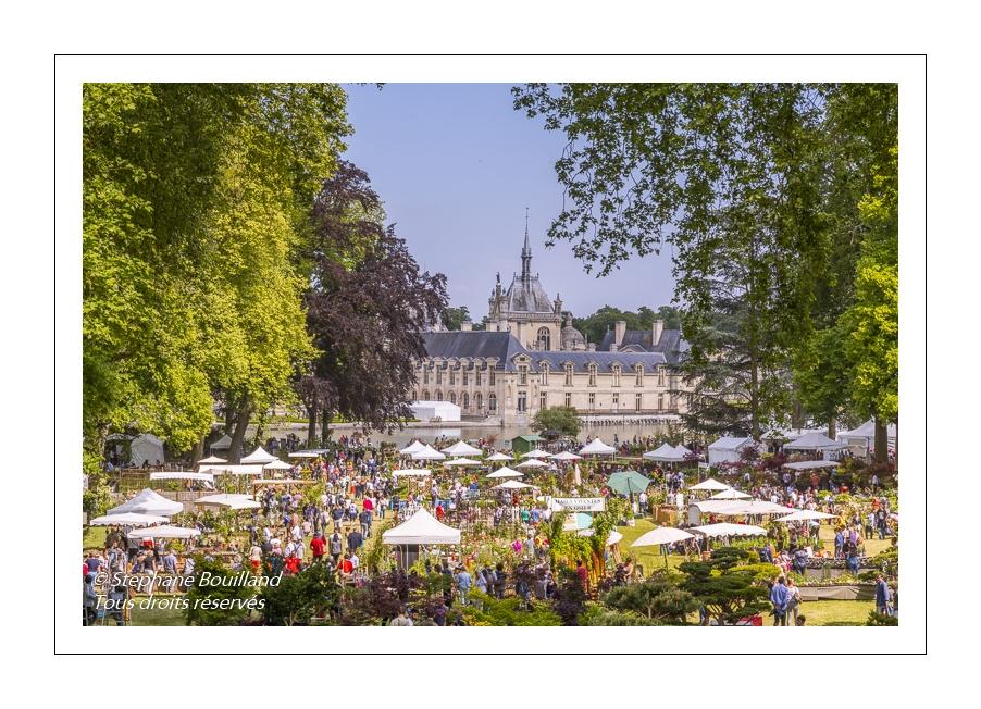 Les Journées des Plantes au Château de Chantilly