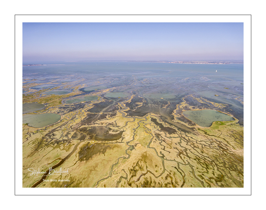 Grande marée en baie de Somme