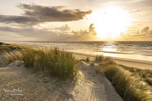 Les dunes du Marquenterre à Quend-Plage.
