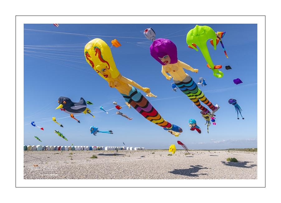 Le Festival de Cerfs-volants de Cayeux-sur-mer